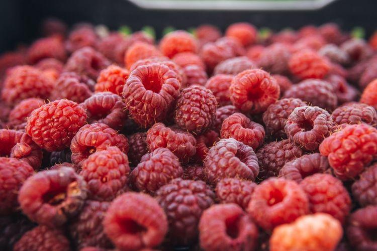 Close-up of raspberries