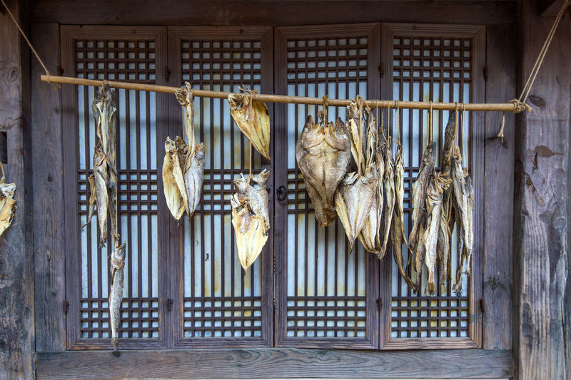 Close-up of fish drying on bamboo