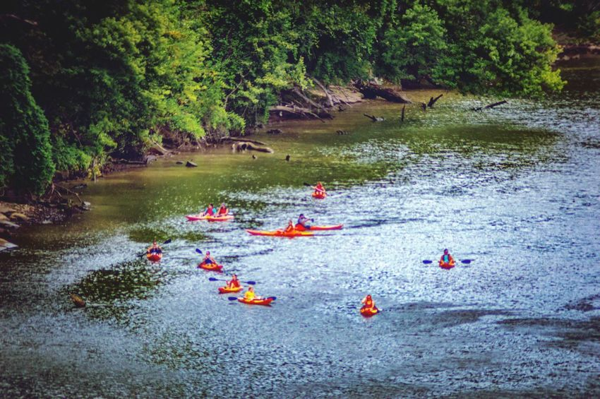Group Of People Canoeing Canoe Trip Canoeing Water Tree Plant Nature Day Real People Waterfront Group Of People Large Group Of People Floating On Water Togetherness Flowing Water Enjoyment Leisure Activity Lifestyles