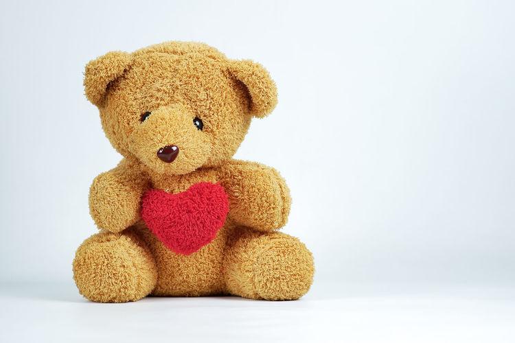 Stuffed Toy Toy