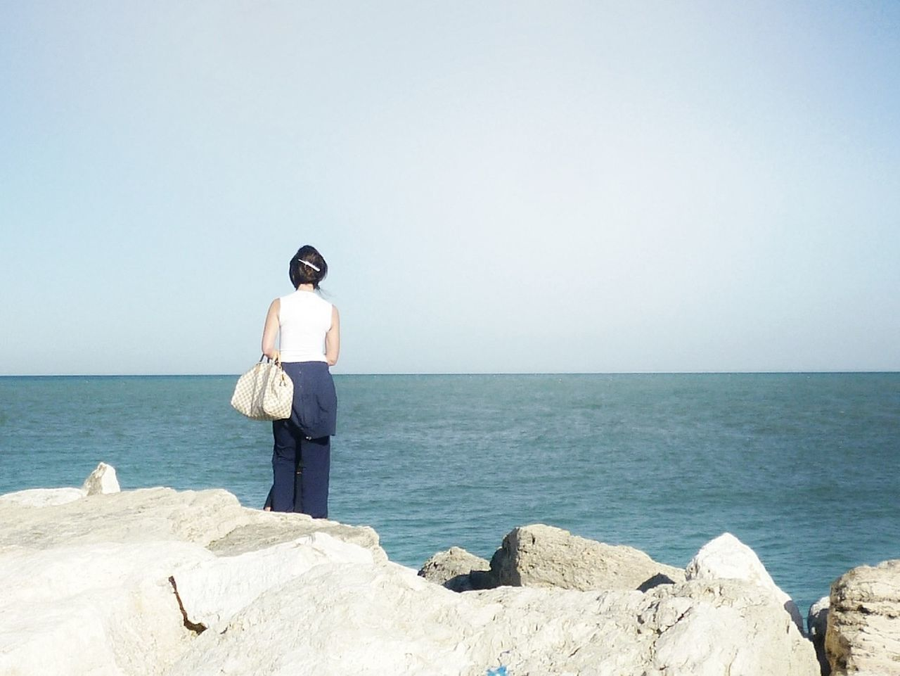 Rear view of woman standing at rocky shore against clear sky