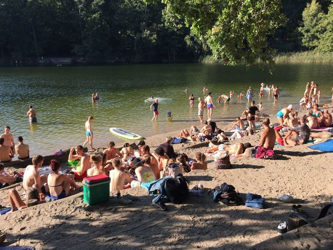 Relaxing at the lake beach Beach Life Relaxing Summertime Bathers Beach Crowd Day Enjoyment Enjoyments Group Of People Lake Lakeside Land Large Group Of People Leisure Activity Lifestyles Nature Outdoors Plant Real People Relaxation Summer Sunbathing Tree Water
