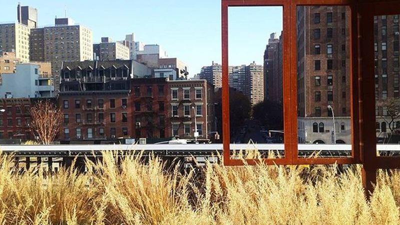 NYC Highline ThisIsNewYorkCity Travel Letsgoback @msferreira318