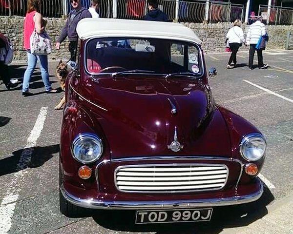 Morris Minor Classic Car Convertables Small Cars Car Show Festivals