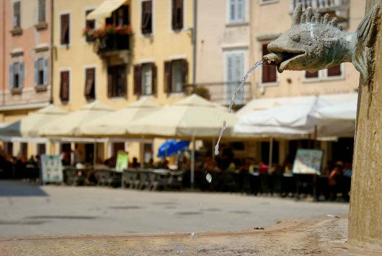 Waterdrops flows from the Fish Gargoyle of a Fontain. Traveling in Rovinj Croatia.