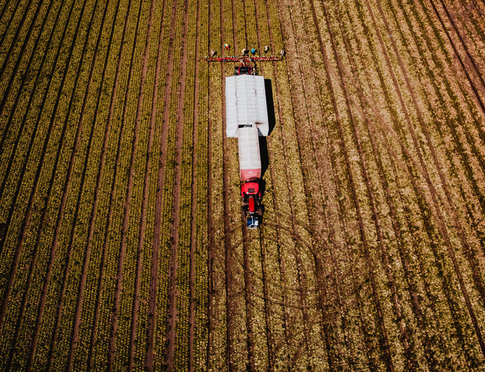 High Angle View Of Tractor And Farmers Working On Field