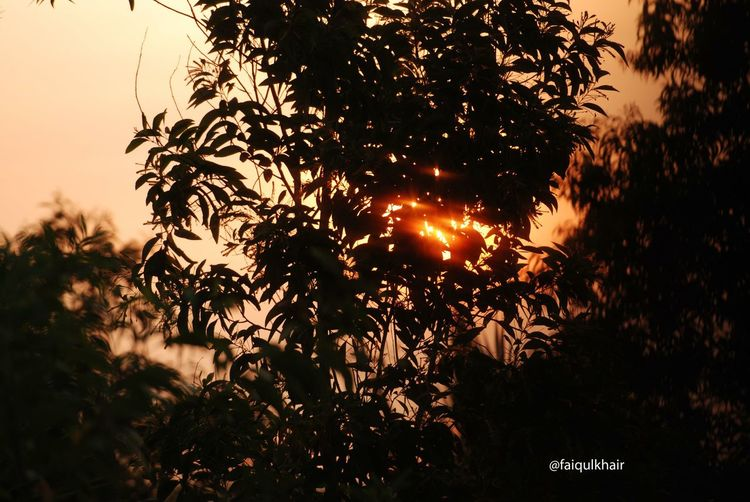 Morning Nusantara EyeEm Nature Lover Exploreeastjava Travel Photography Nikonphotography Sunrise EyeEm Indonesia Ngaleleng