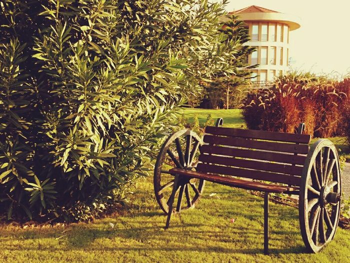 Beautiful Nature Sunsetlover Holiday♡ Hotel Life