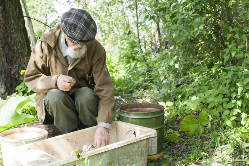 Senior Man Collecting Eggs In Container At Forest
