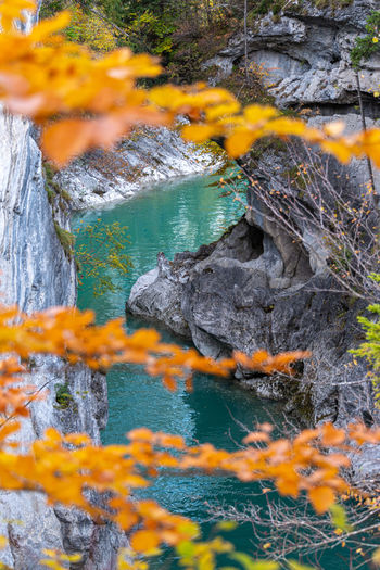 Autumn leaves on rock by river