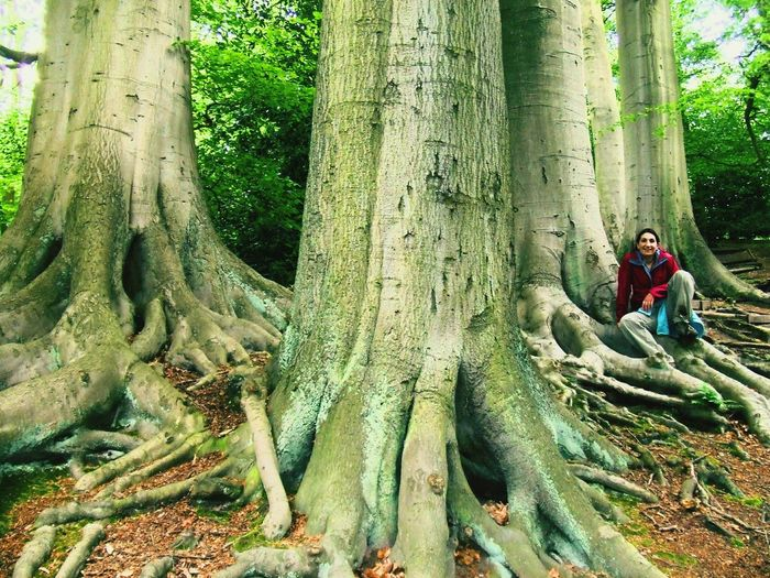 Woman sitting on large tree roots in forest
