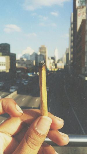 High Cannabis Thc Herb CBD Pot Marijuana Weed EyeEm Selects Smoke Erva Maconha Human Hand Human Body Part City Human Finger One Person Building Exterior Skyscraper Architecture Sky Focus On Foreground Built Structure Outdoors Day People Urban Skyline Close-up Cityscape