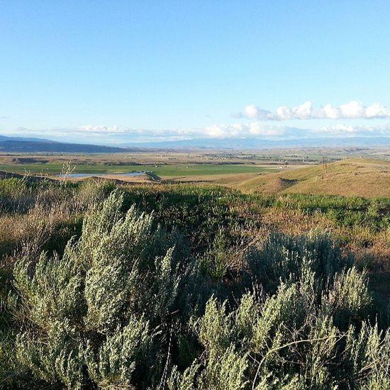 Back in Southern Idaho Sagebrush Blueskies