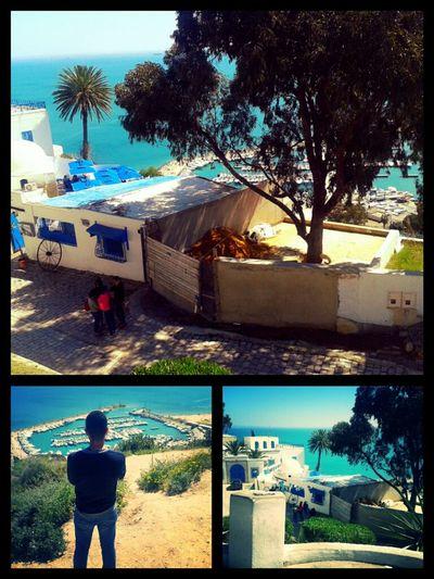 Taking Photos Belle Tunisie Popular Photos Landscape_Collection