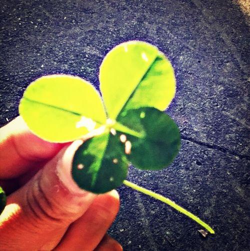 Lucky !