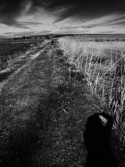 Taking pictures! Shadow Of Me Road Ominous Sky Black & White