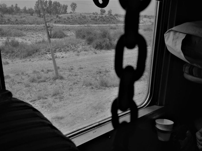 A Peek At Nature Looking Outside Moving Nature Shadow Train Travel Window