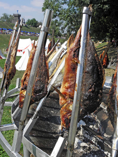 Renaissance Festival,Koprivnica 2016, fishes on spit, 12 2016. Close-up Croatia Day Eu Europe Fair Fire Fishes Food Grill Koprivnica Outdoors Renaissance Festival Spit Traditional