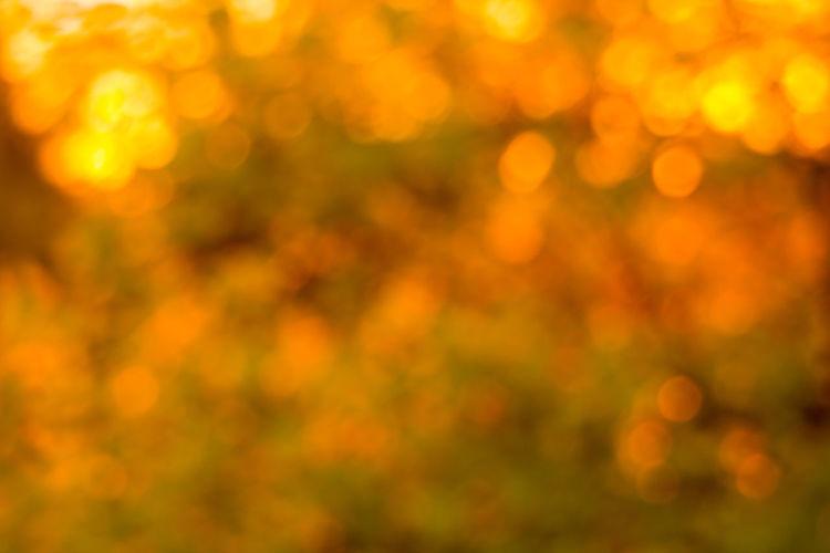Defocused image of illuminated yellow lights