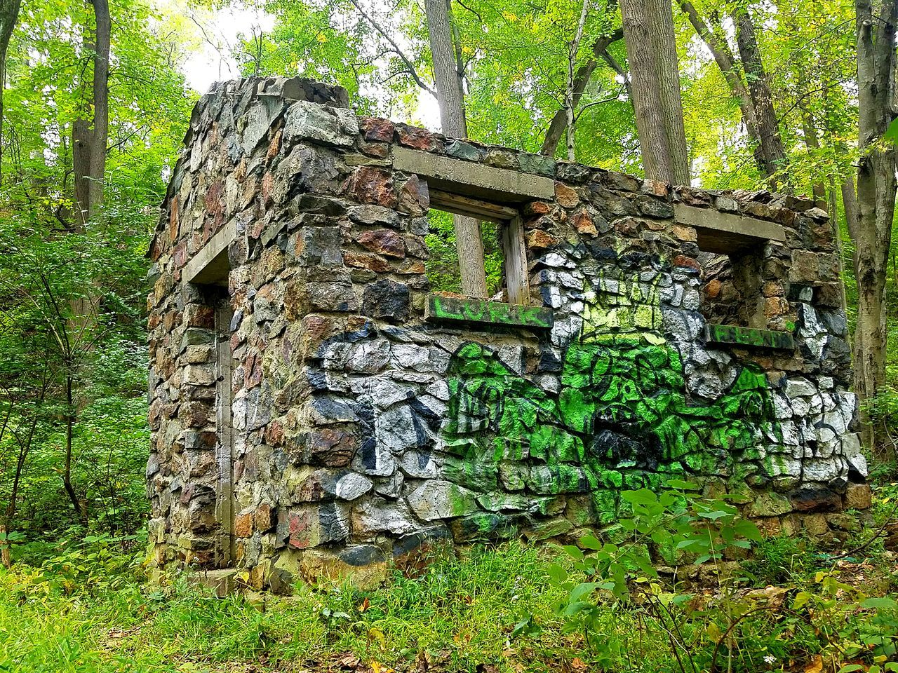 built structure, architecture, day, no people, outdoors, green color, tree, growth, building exterior, nature