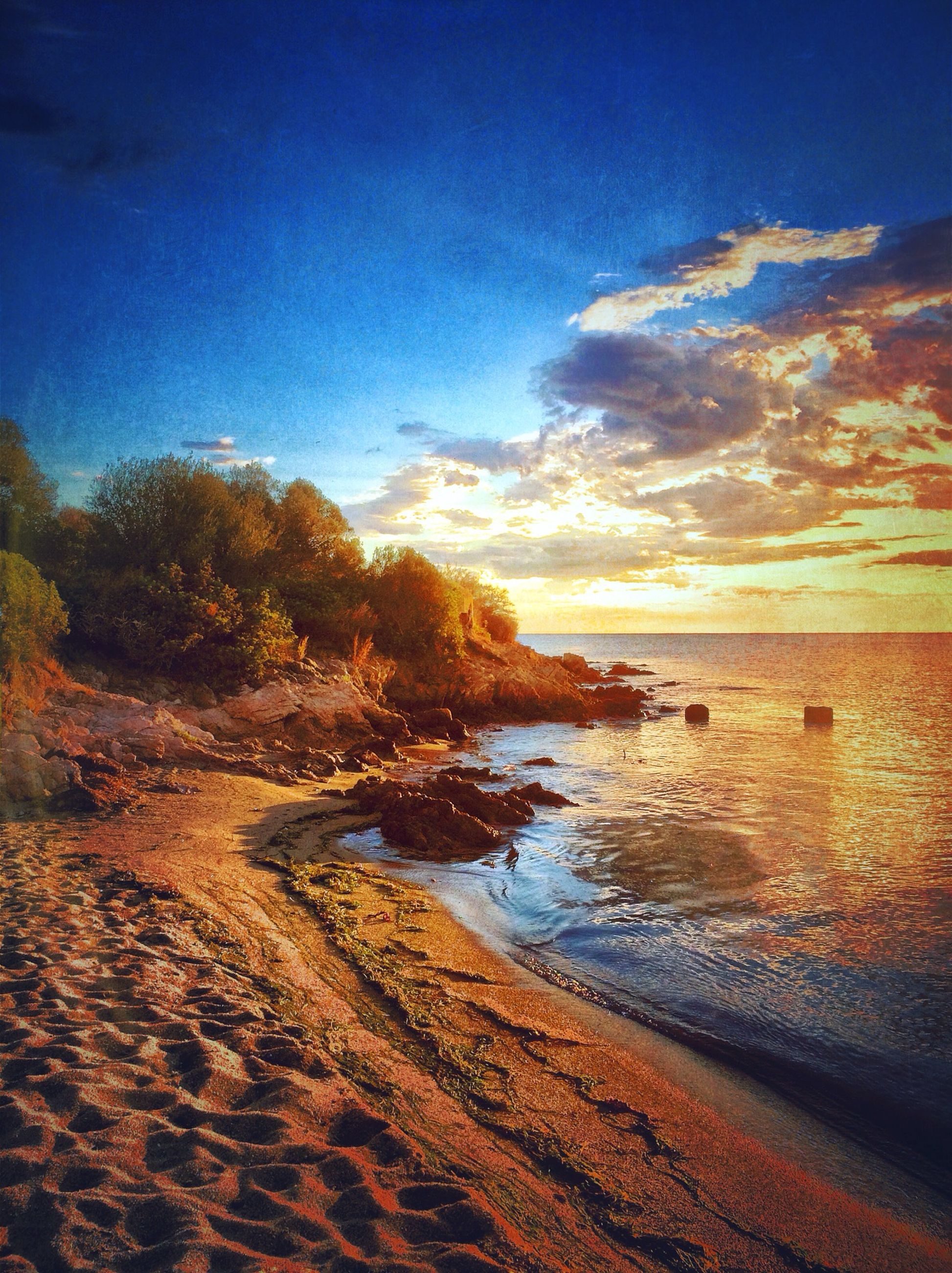 water, tranquil scene, scenics, tranquility, sky, beauty in nature, beach, sea, sunset, nature, shore, idyllic, reflection, sand, blue, cloud - sky, horizon over water, sunlight, outdoors, tree