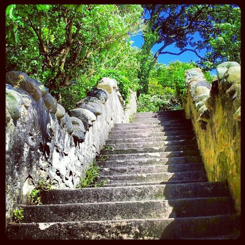 'Step up' Ravenscraig Kirkcaldy Fife  Scotland steps Stairway Craggy igscout igscotland igtube igaddict Igers igdaily Tagstagram most_deserving iphonesia photographyoftheday instamood instamob instagood instagrammers picoftheday bestoftheday Primeshots