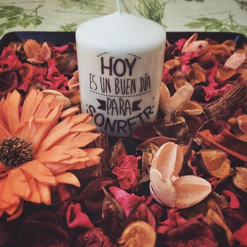Flower Flores Text Mensaje Petal Petalos Nature Vela Hipster