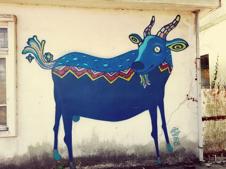 Graffiti on white wall and artist is unknown Blue Goat Graffiti Wall Jejuisland Korea Unknown Artist Summer Trip Photos
