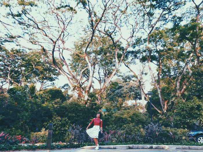 Rear view of woman standing by trees