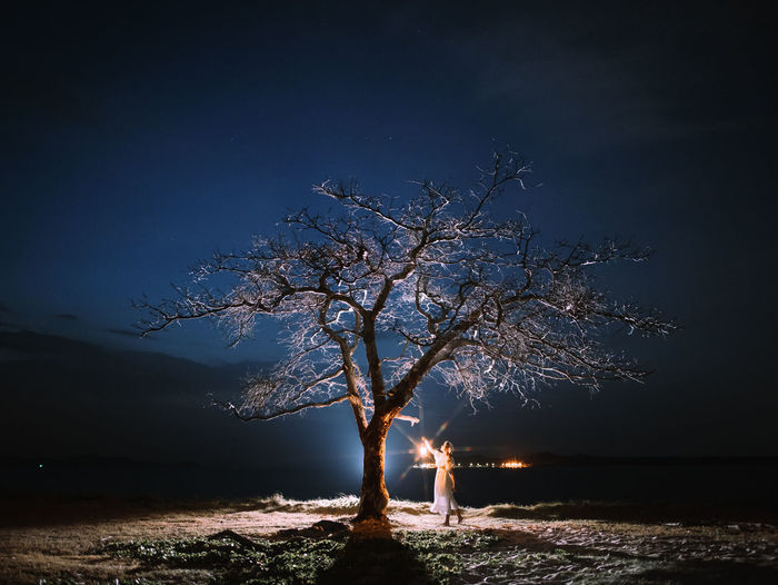 Person standing by illuminated tree on field against sky at night