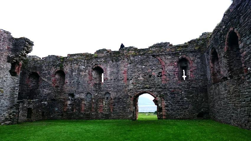 Castle climbing Castle Scotland Climbing Ruins Scenic Daredevil Boyfriend Check This Out Taking Photos Holiday