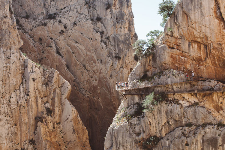 Caminito del Rey, Andalucia, Spain Adventure Andalucía Andalusia Beauty In Nature Bridge Bridge - Man Made Structure Caminito Caminito Del Rey Camino Day Malaga Mountain Nature Nature Outdoors Railing River Rock - Object Tree