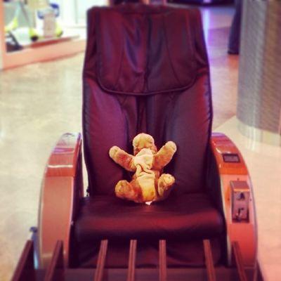 Getting ready for a Chair Massage . Puppy Stuffedanimal cute daww terracity antalya relax