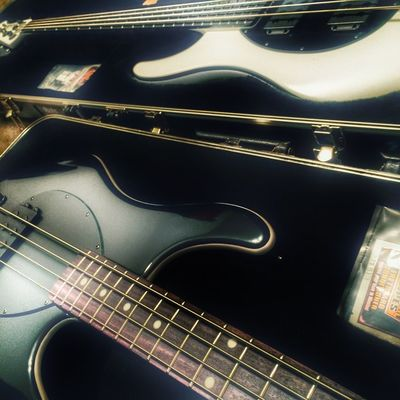 Swanky and Swan , my uocoming tour rulers ....www.geminisyndrome.co m Bass Apsyndrome Live Music