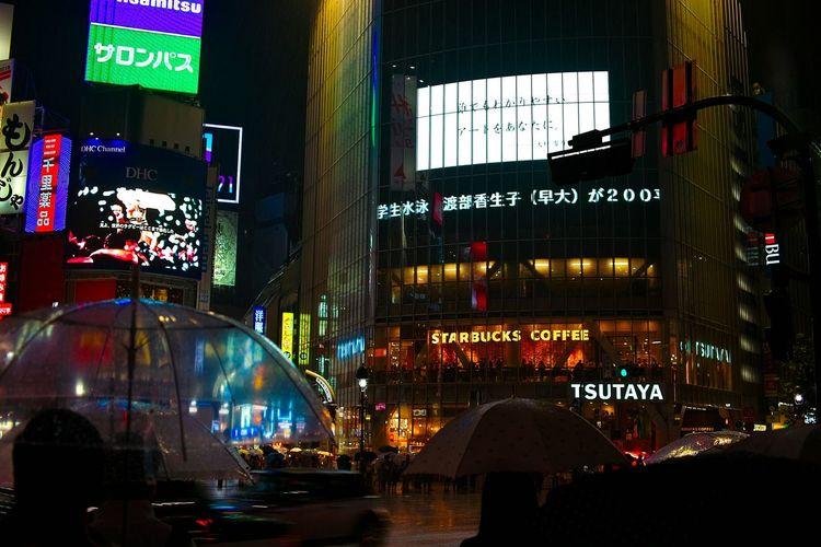 Sigma Dp2 Shibuya Rain