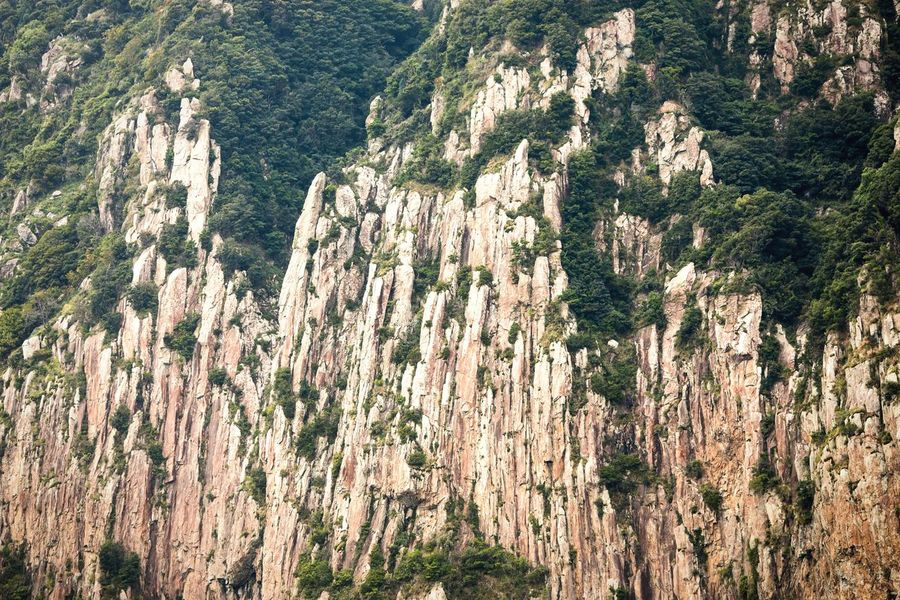 Nature's drawing Nature Rock - Object Beauty In Nature Geology Steep (null)Scenics No People Cliff Tranquility Landscape Outdoors Rock Face Mountain Tree Volcanic Landscape Rock Climbing Rock Formation JEJU ISLAND  Jeju Korea Pattern Mountains Steep Cliff Nature