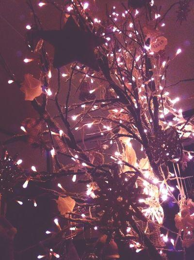Not an average xmas tree :) Xmas Christmas Merry Christmas!