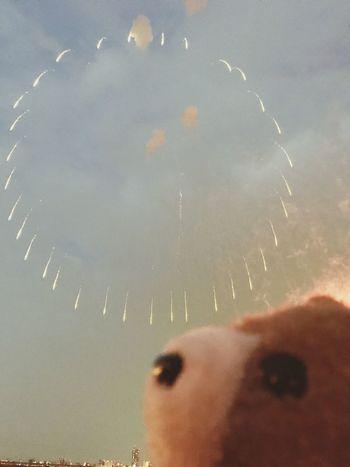 Sky fireworks Firework Display