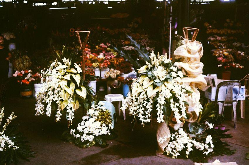 Eyeem Philippines 35mm Film Filmisnotdead Istillshootfilm Buyfilmnotmegapixels Thevintagecollection Street Asahipentaxspotmatic Supermulticoatedtakumar35mm3.5 Kodakultima100