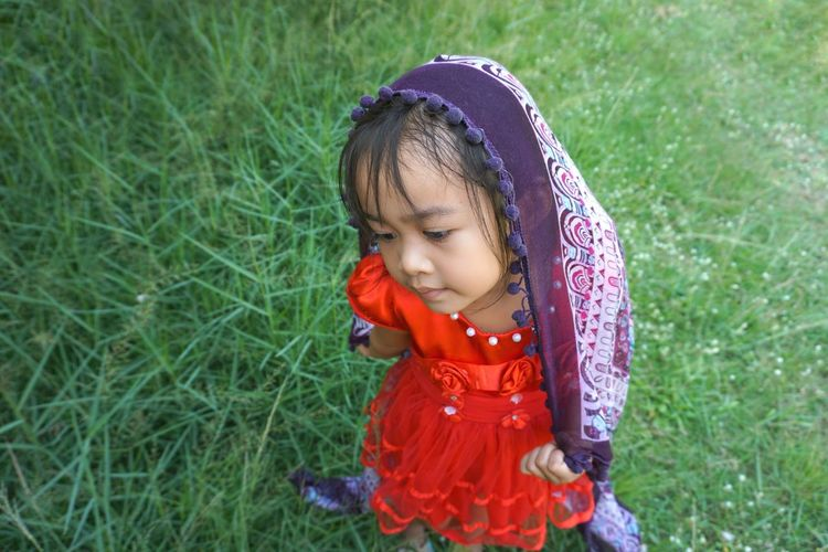 A girl looking grass People Background Wall Natural Beauty Looking Cute Lovely Girl Grass Green Siting Red Women Kid ASIA Asian  Thailand 5 Years Old Warm Clothing Child Childhood Girls Smiling Cute Looking Down Knit Hat Innocence Grass Little Young