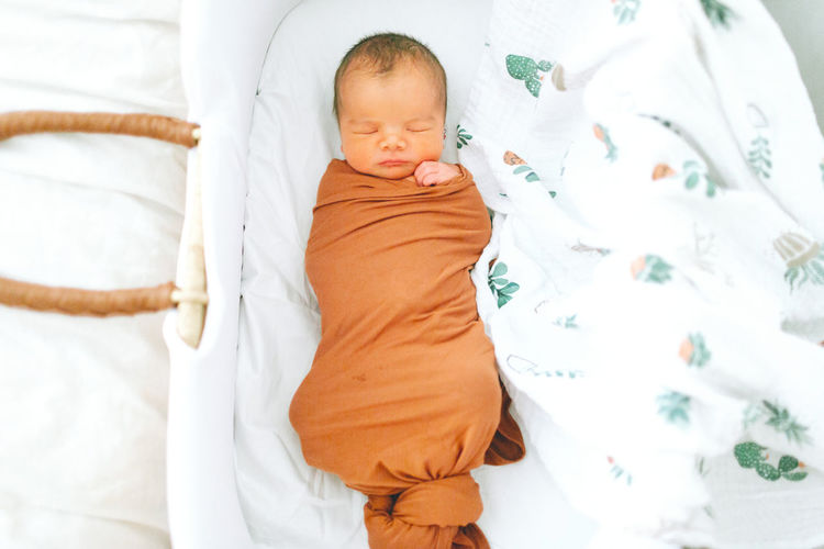 A swaddled newborn baby sleeping in a bassinet. Child Baby Sleeping Newborn Swaddled Bassinet