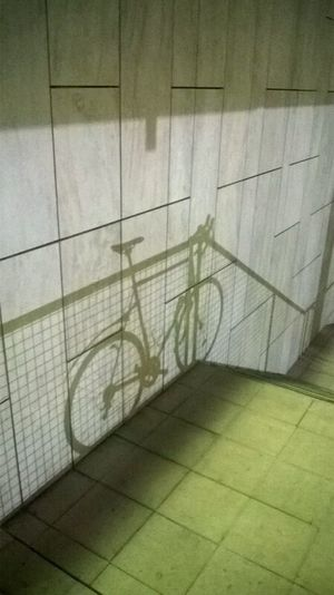 Bike Bycicle Fence Fence Shadow Locked Shadow Shadow And Light Stairs Let's Go. Together. The Graphic City