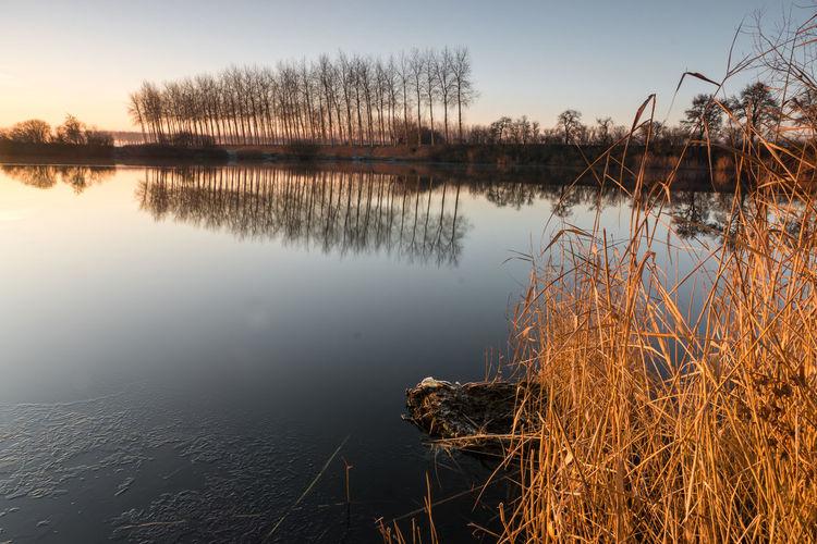 Sunrise at Boerekreek, Sint-Jan-in-Eremo. Belgium EyeEm Market © EyeEm Premium Collection Reflection Water Frost Creek Tranquility Landscape Sony A77ii Belgium Reflection Tranquil Scene Winter Sunrise