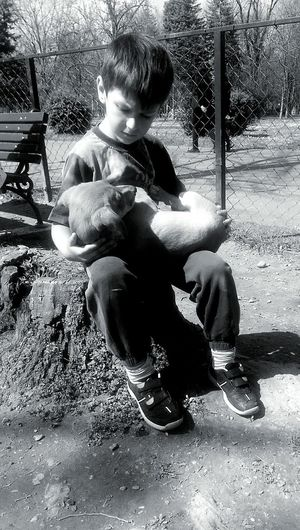Love Puppies Friends ❤ Taking Care Portrait Unconditional Love