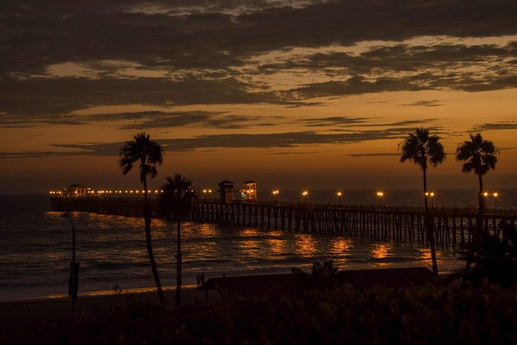 The Great Outdoors With Adobe Pier California OceansideCA Sunset Palm Trees The Great Outdoors - 2016 EyeEm Awards