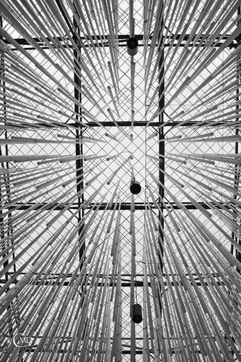 Expo 2105 - Milano Expo2015 Expo2015milano Blackandwhite Black & White Architecture