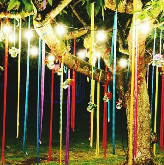 Multi Colored Strips Hanging On A Tree