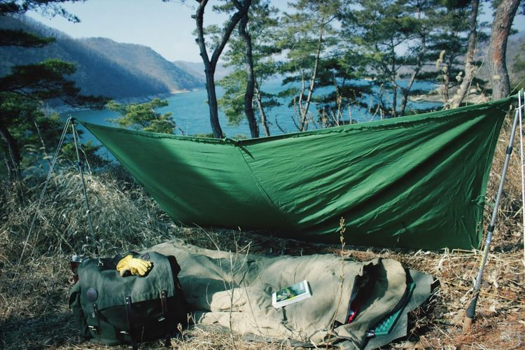 Camping Bushcraft