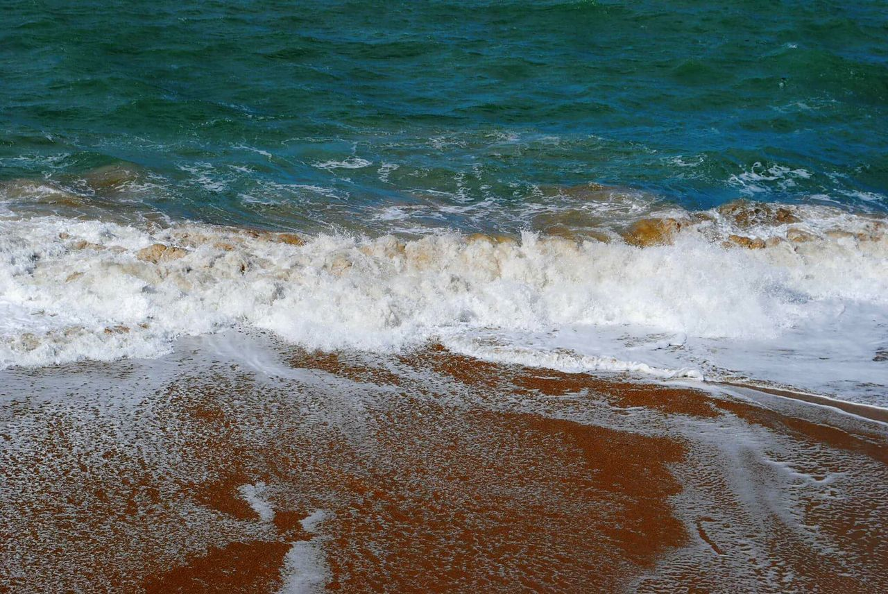 wave, sea, water, surf, nature, no people, beauty in nature, beach, day, outdoors, motion, sand, scenics, power in nature
