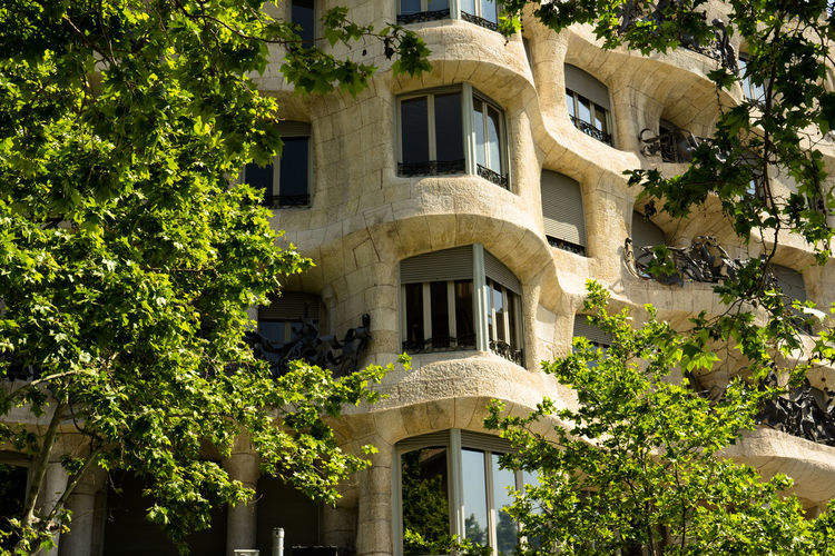 Architecture Building Exterior Built Structure Plant Tree Building Growth Green Color Nature No People Day Outdoors Residential District Sunlight Window Low Angle View House Plant Part Leaf City Barcelona SPAIN Gaudi EyeEmNewHere The Architect - 2019 EyeEm Awards
